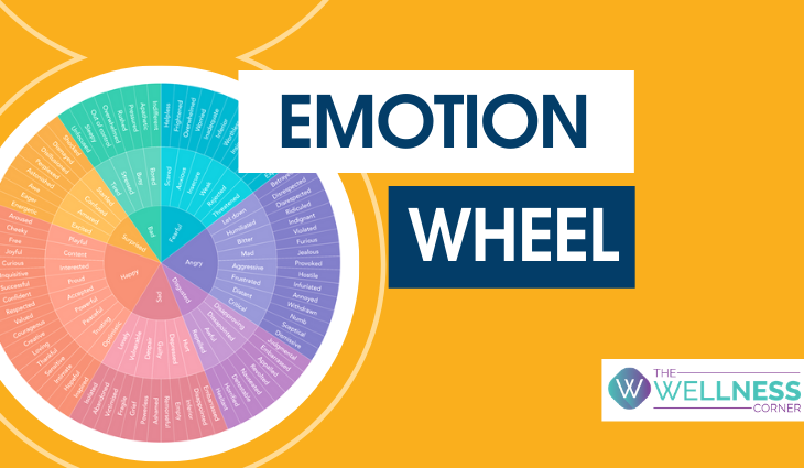 Emotion Wheel: The Psychologist Approved Tool to Address Your Feelings
